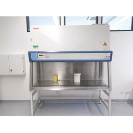 Thermo Scientific Safe S 2020 1.8 Sicherheitswerkbank...