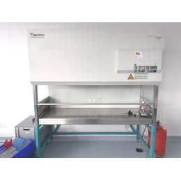 Thermo Heraeus HERAsafe HS18 Sicherheitswerkbank Safety...